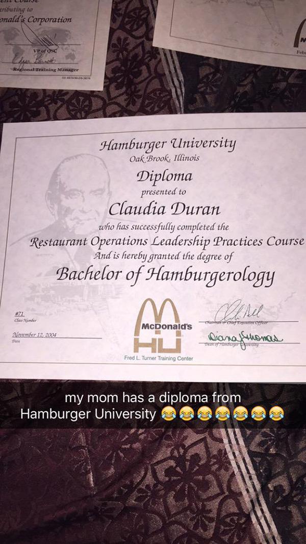 Đh Hamburger 20